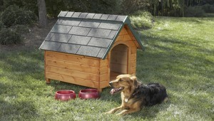 11 Completely Free Dog House Plans