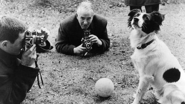 The Dog Who Saved the World Cup