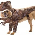Help Us Choose A Dog Costume