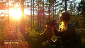 15 Safety Tips For Your Dog During Hunting Season