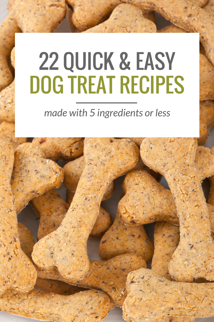 Easy Homemade Healthy Dog Treats Recipes