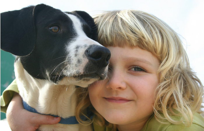 teaching dog bite prevention to kids