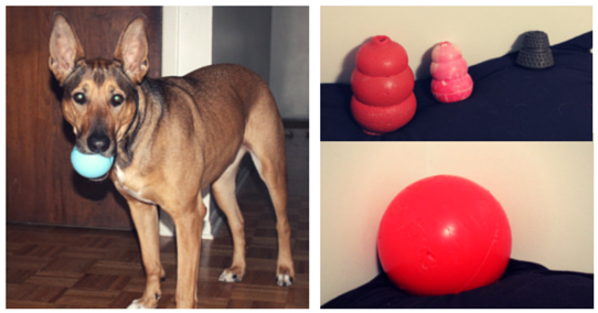 indestructible dog toys