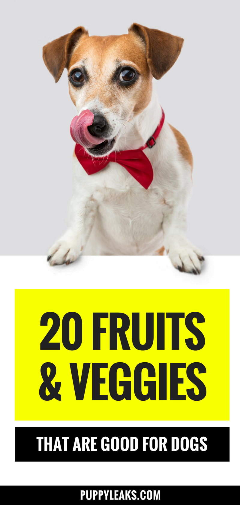 20 fruits & veggies that are good for your dog. Fruits & veggies that are safe for your dog and make healthy treats.