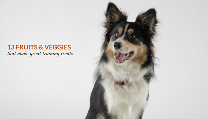fruits & veggies that are good for dogs
