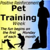 positive reinforcement pet training