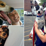 17 Super Cute Dogs Smiling After Being Adopted