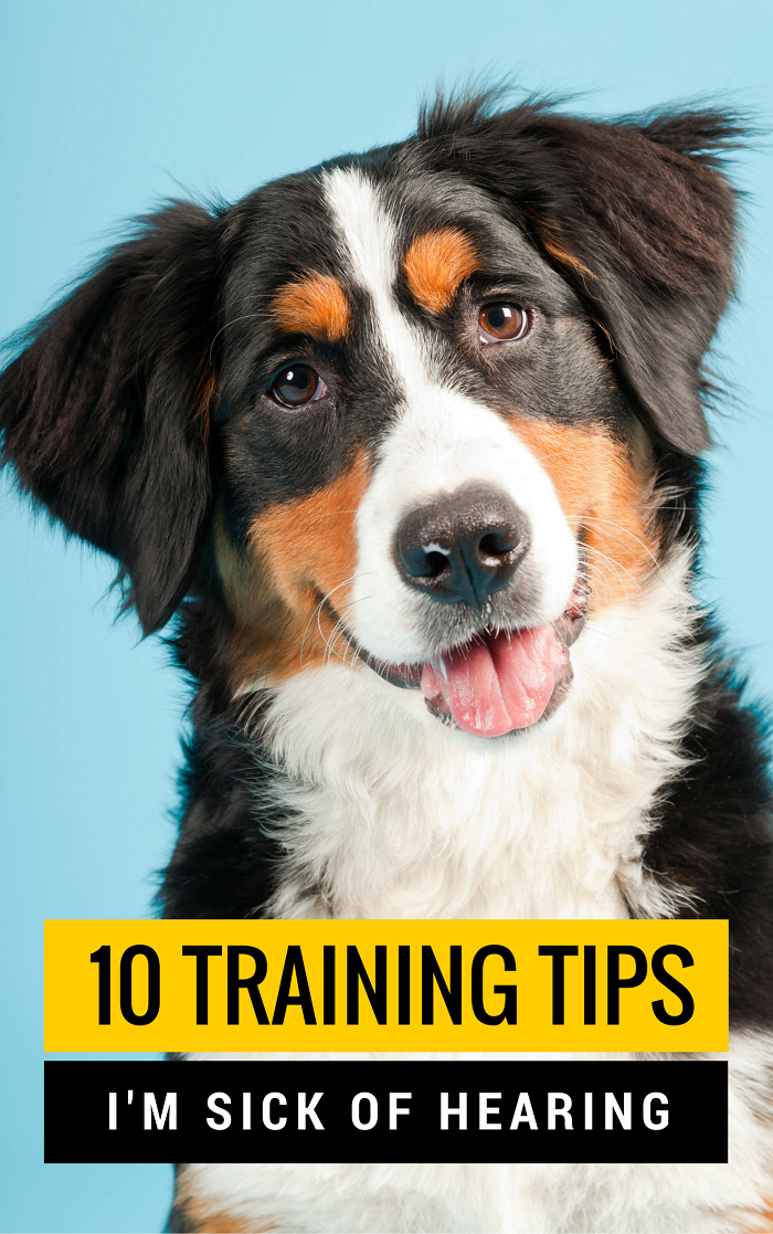 10 Training Tips and Myths I'm Tired of Hearing