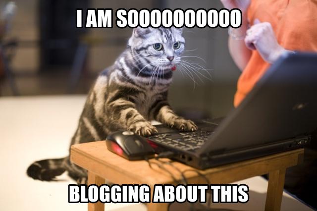 Blogging Meme