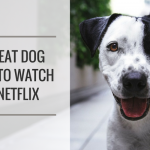 7 Great Dog Documentaries to Watch on Netflix