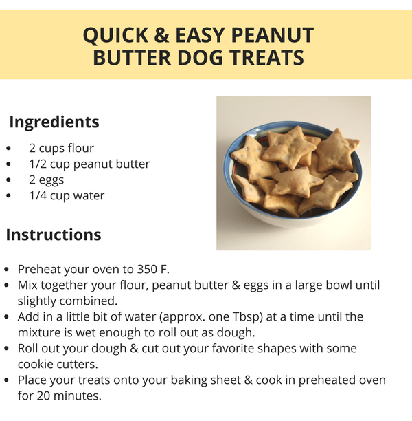 Homemade Dog Treats Without Peanut Butter